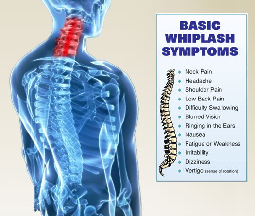 Raleigh Chiropractor Amp Whiplash Treatment